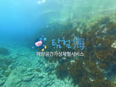 해양수산부 독도 촛대바위 수중 동영상VR